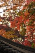 鎌倉・白旗神社(源頼朝の墓)