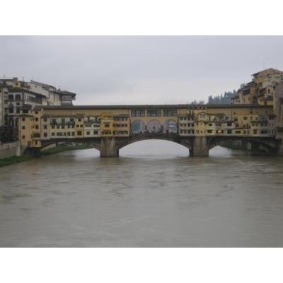 橋から望む